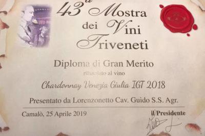 mostra dei vini triveneti 2019 01